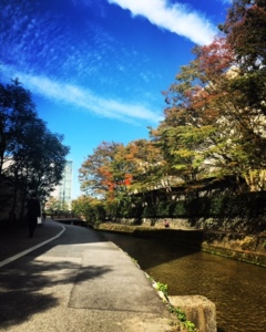 お散歩♪(´ε` )